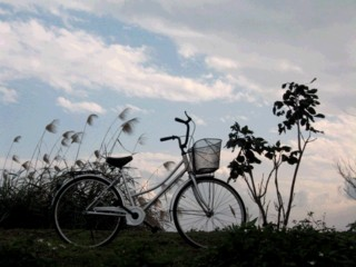 bicyle-trip.jpg